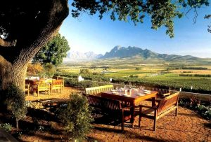 Winelands_foto_1159110256